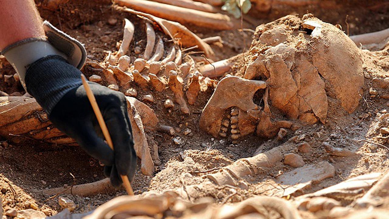 Похороненный стоя: в Германии археологи нашли уникальное вертикальное погребение
