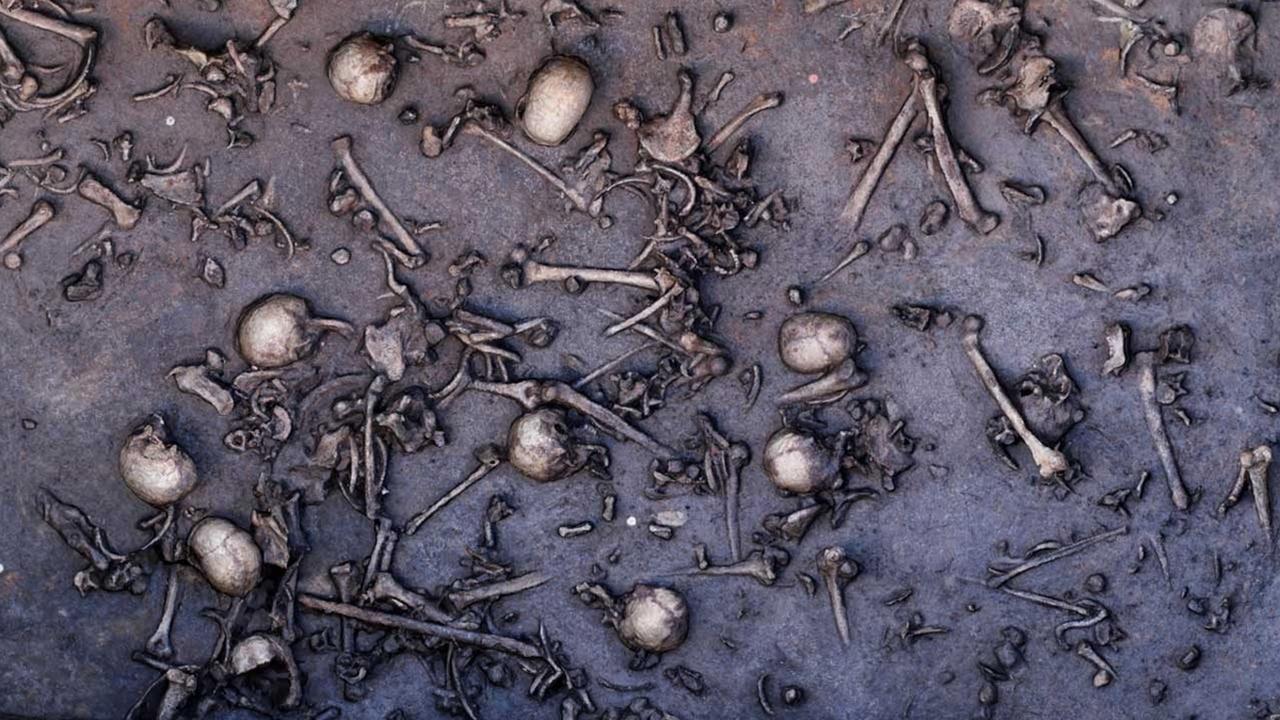 Битва у переправы: обнаружено место грандиозного сражения бронзового века