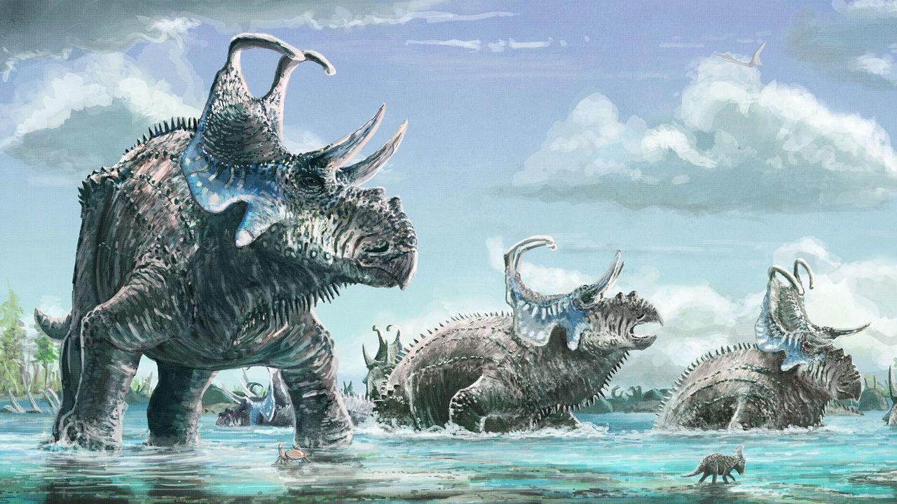 Два новых вида рогатых динозавров с изогнутыми шипами пополнили список цератопсов