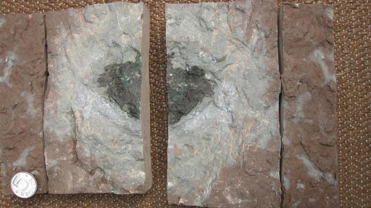 В Швеции найден неизвестный ранее метеорит возрастом в 470 миллионов лет