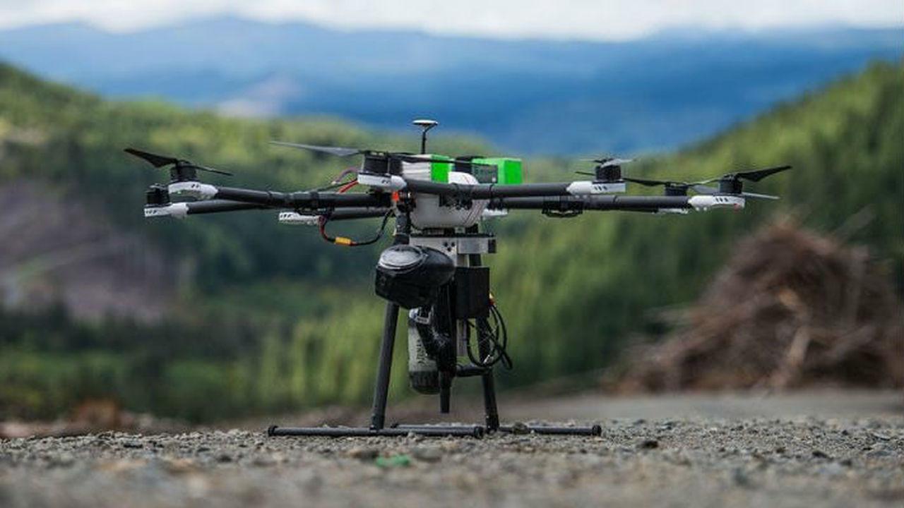 Армия дронов готова приступить к посадке лесов