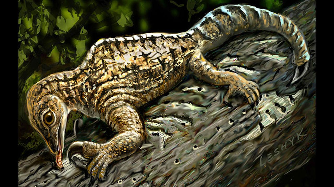 Новая окаменелость странной рептилии продемонстрировала тупиковую ветвь развития животных