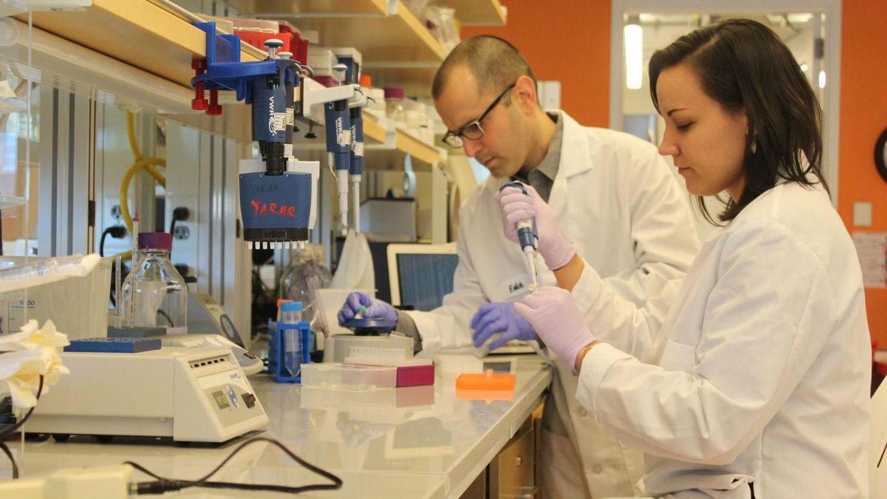 Новая технология позволит сохранить всю информацию человечества в одной комнате при помощи ДНК