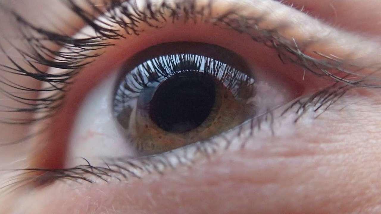 Глаза в глаза: исследователи выяснили, почему люди с аутизмом избегают зрительных контактов