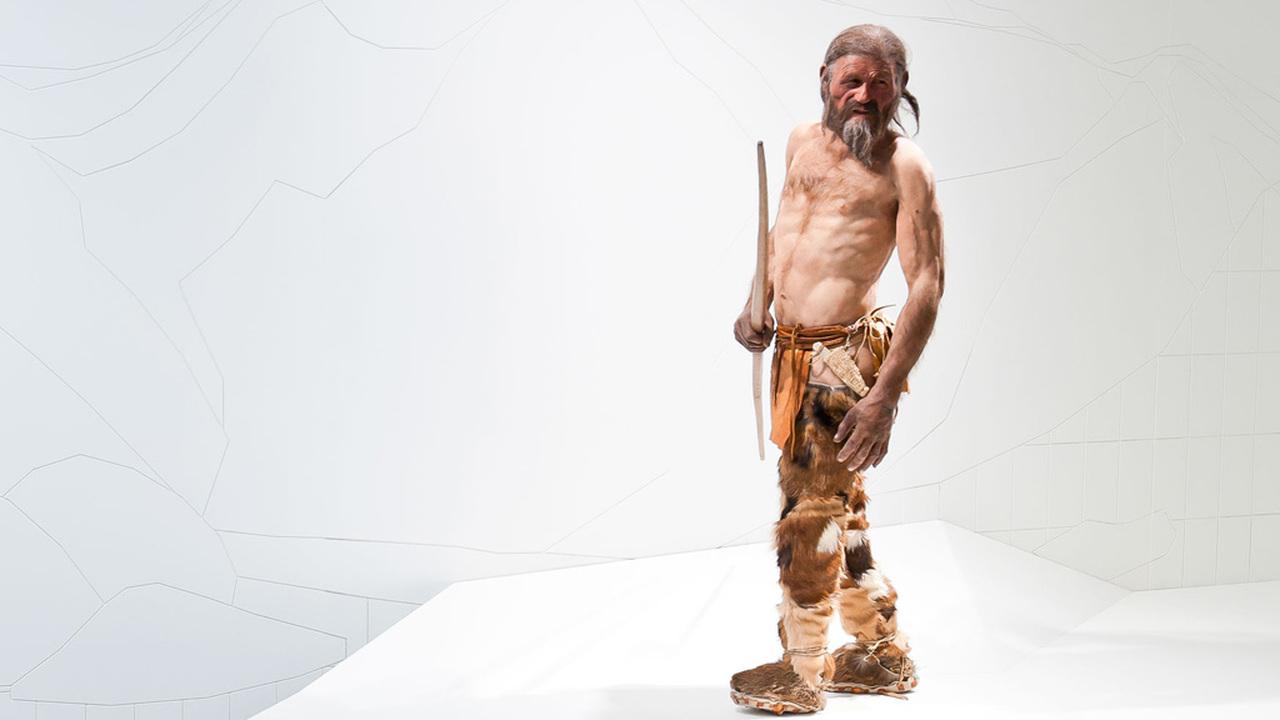 Made in Italy: происхождение топора Ледяного человека стало полной неожиданностью для ученых
