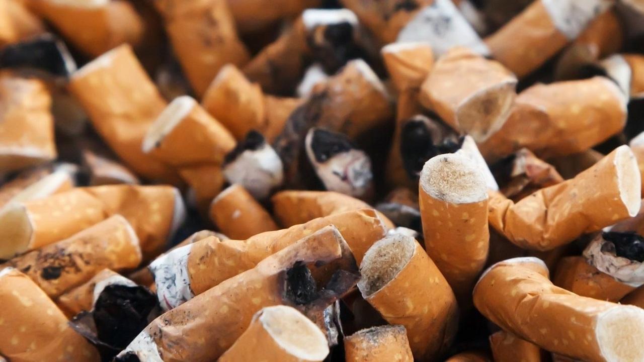 Безопасно и практично? Окурки предлагают закатать в асфальт