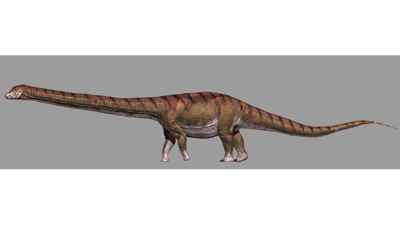 Весом с космический зонд: палеонтологи описали крупнейшего в истории динозавра