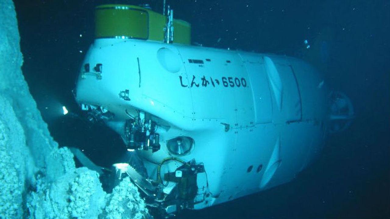 Японцы обнаружили рыбу на рекордном расстоянии от поверхности океана