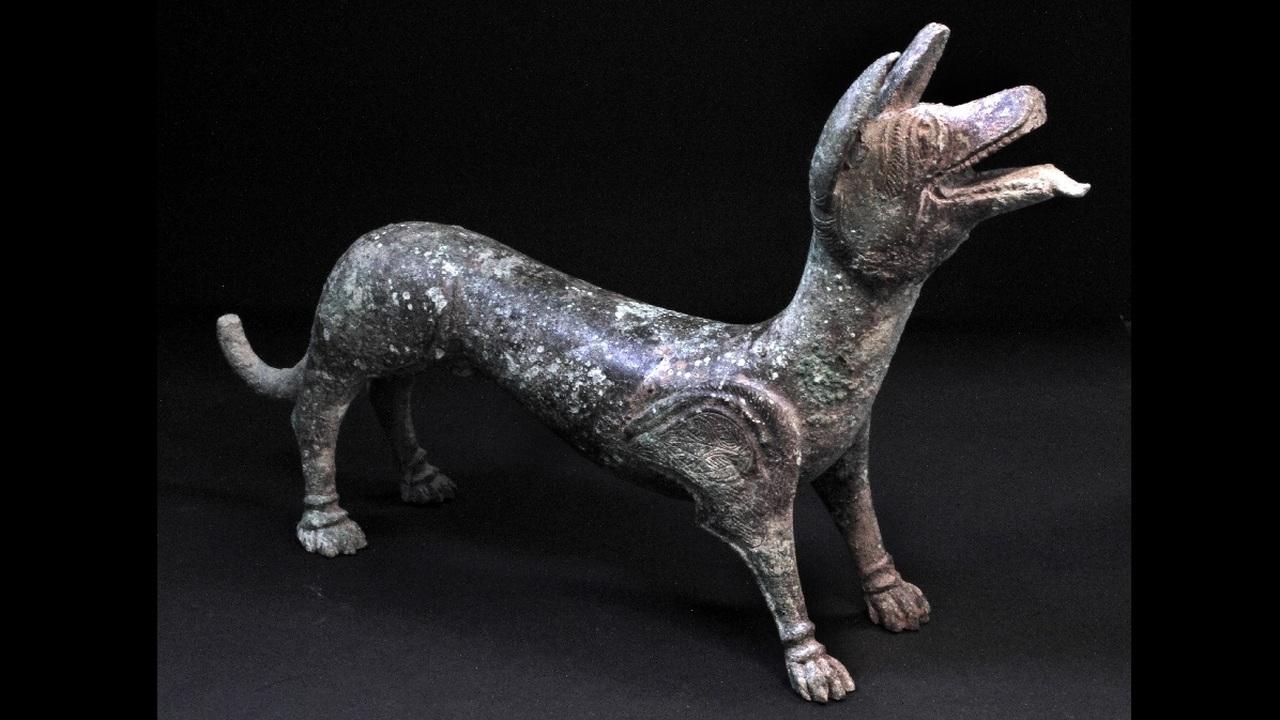 """Британский энтузиаст обнаружил древнеримскую статую """"исцеляющей собаки"""""""