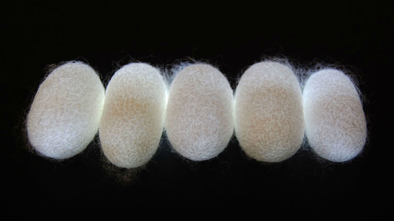 """Шёлковым волокнам присвоили звание высокотехнологичных """"природных метаматериалов"""""""