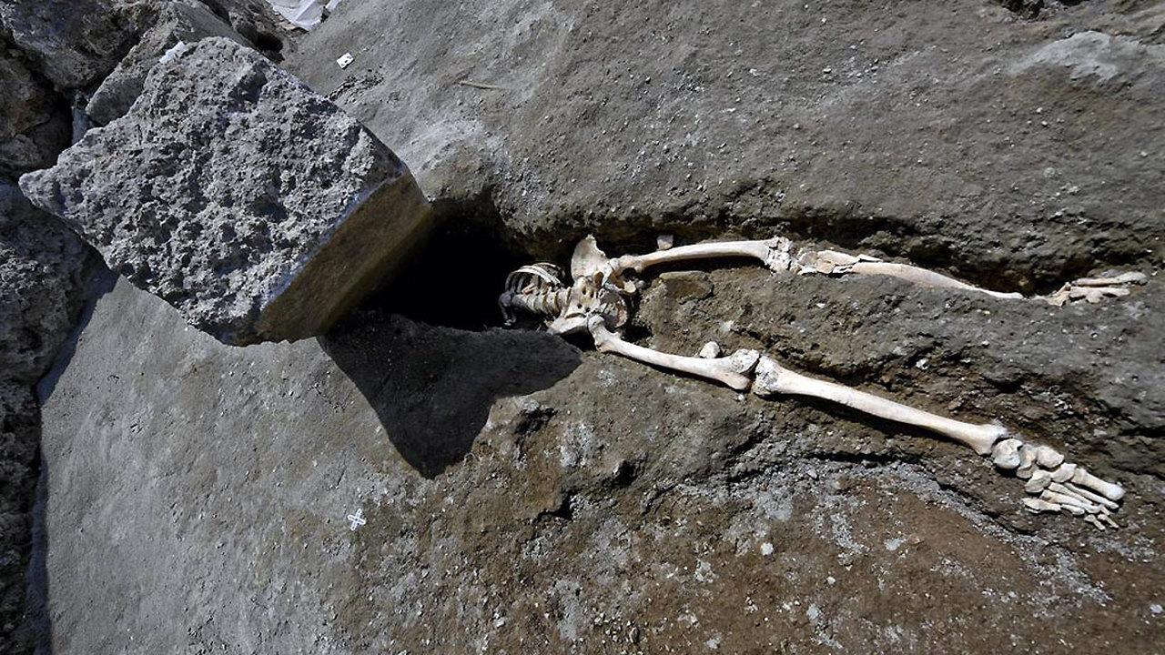 Скелет, ставший мемом, зоопарк на фресках и просто балконы: новые находки в Помпеях