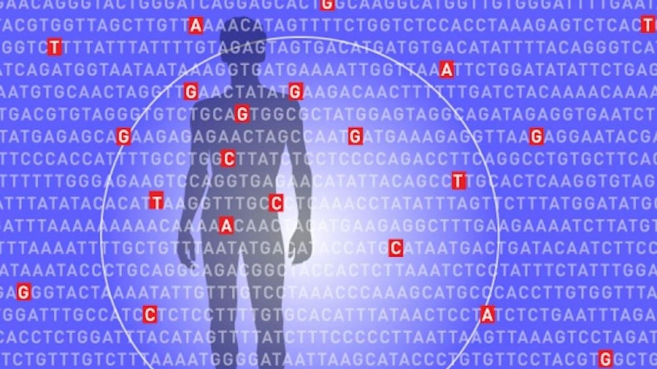 Новый алгоритм определяет риск развития смертельного  заболевания до появления симптомов