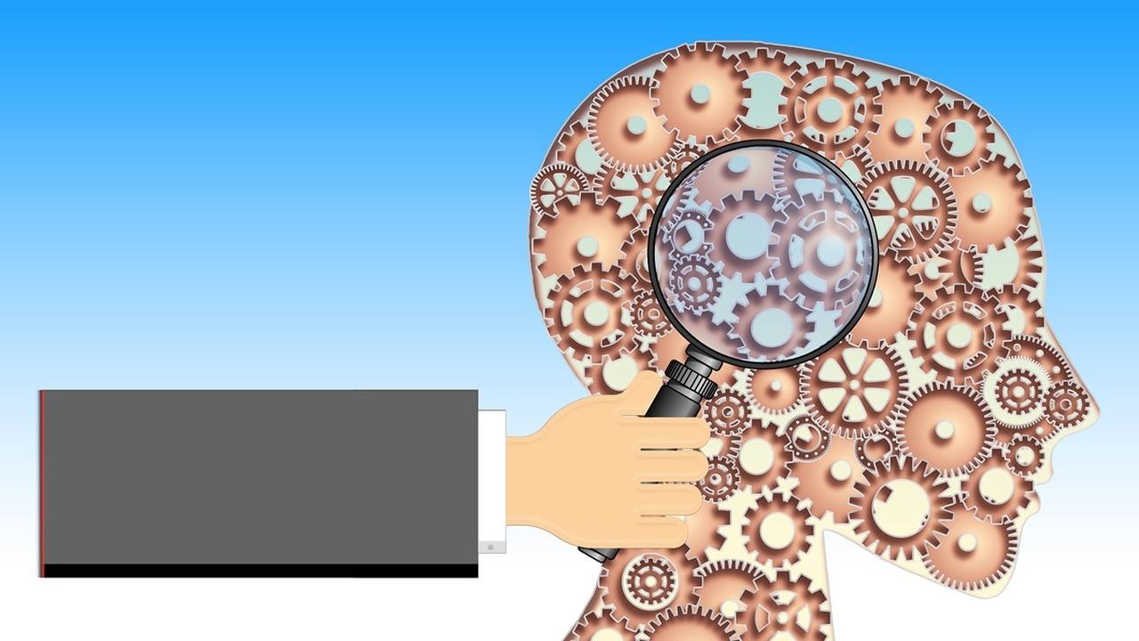 В мозге найдено два нейронных хронометра, отвечающих за предсказание будущего