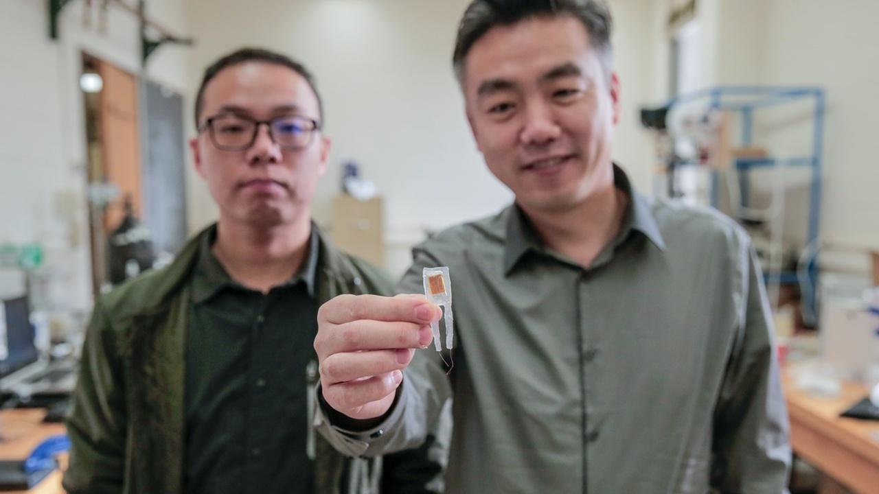 Без диет и упражнений: миниатюрный имплантат поможет худеть, обманывая мозг