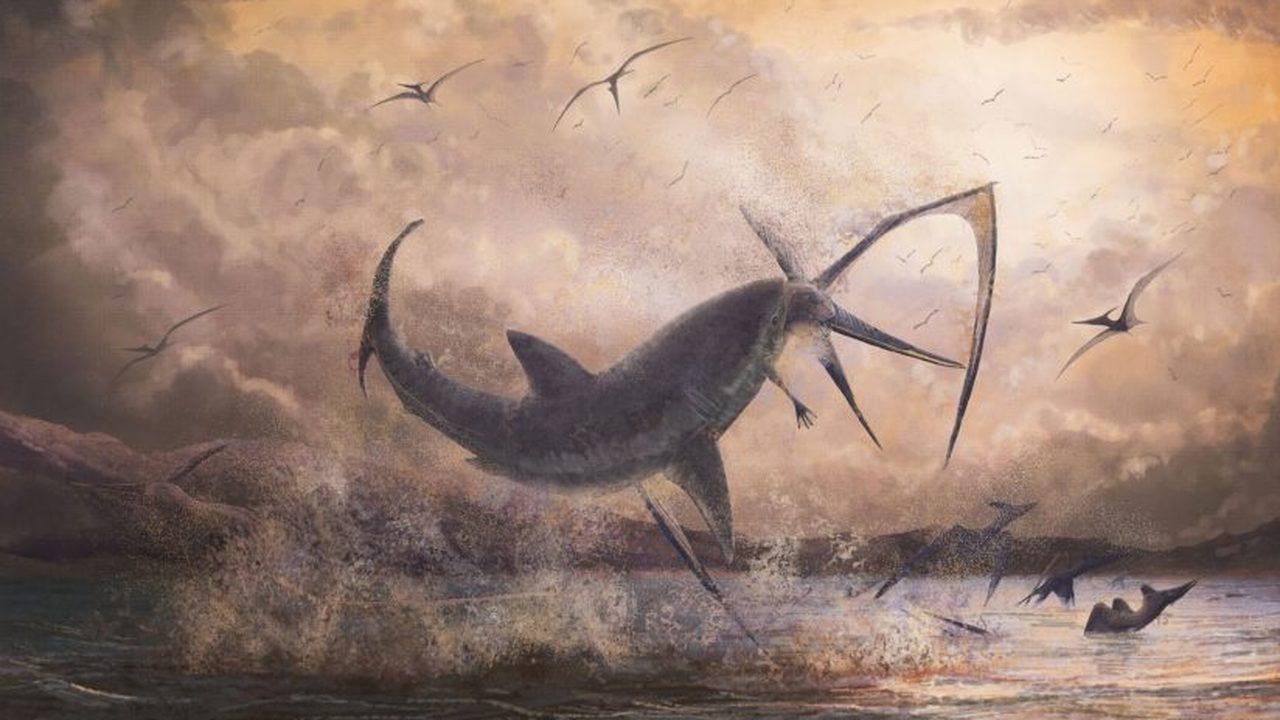 Битва титанов: найден птерозавр, убитый акулой