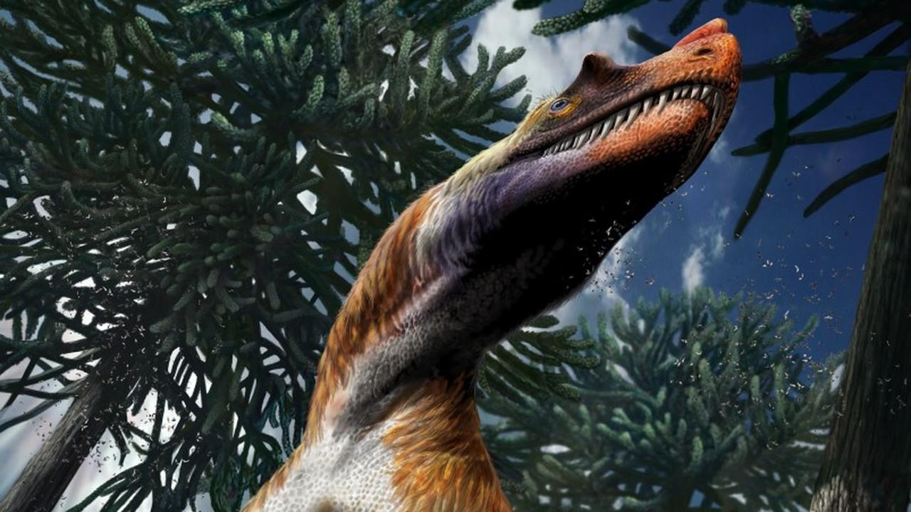 """Ужасный и опасный: в Италии найдены останки хищного динозавра с """"оружием в лапах"""""""