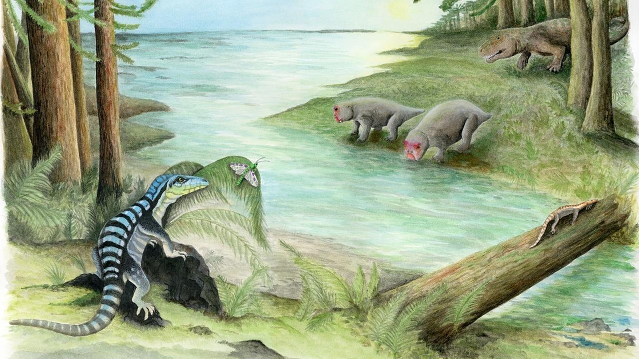 250 миллионов лет назад в Антарктиде царствовали рептилии, похожие на игуан