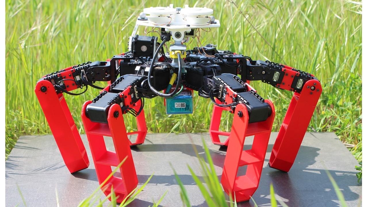 Без GPS: робота-муравья научили ориентироваться по Солнцу