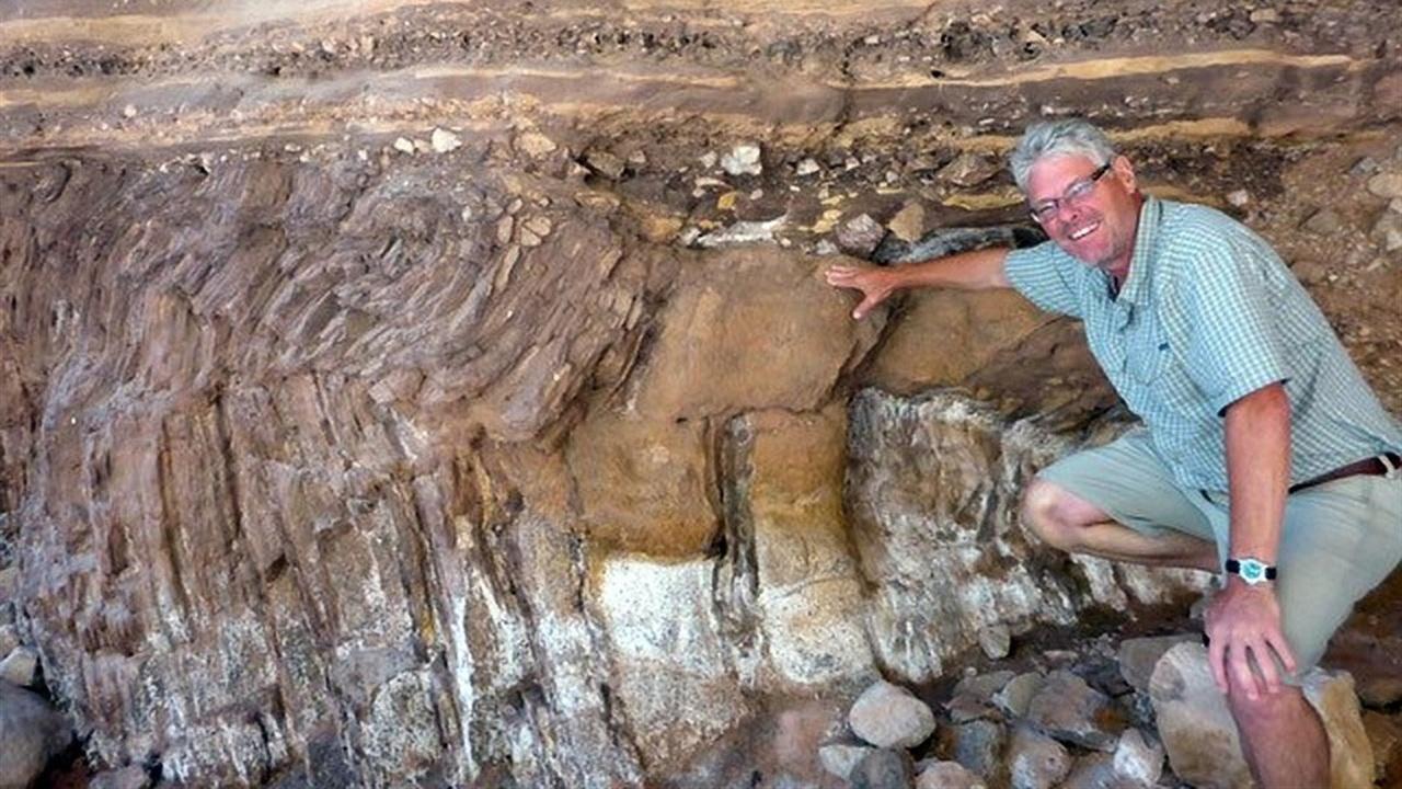 Хайвэй возрастом полмиллиарда лет: в Канаде обнаружены удивительные следы древних червей