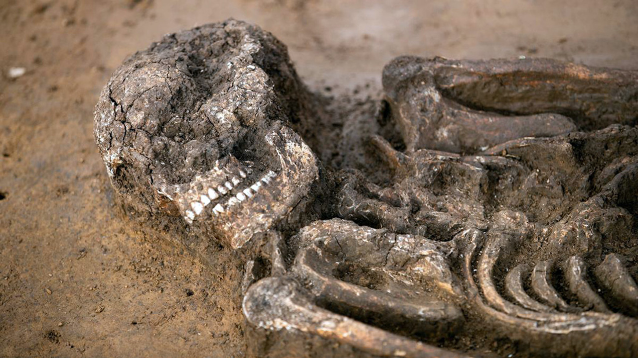 Скелет за 2000000 евро: в Баварии обнаружили уникальные останки эпохи неолита