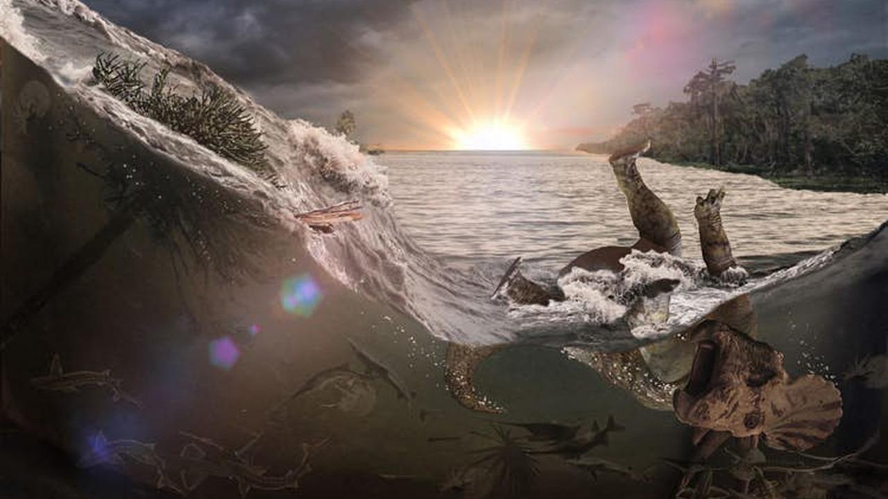 Детали конца света для динозавров: найдены останки рыб, погубленных астероидом 66 миллионов лет назад