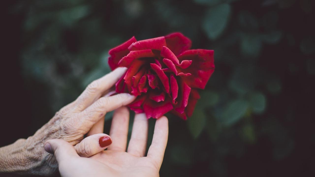 Снижение обоняния в пожилом возрасте может указывать на скорую смерть