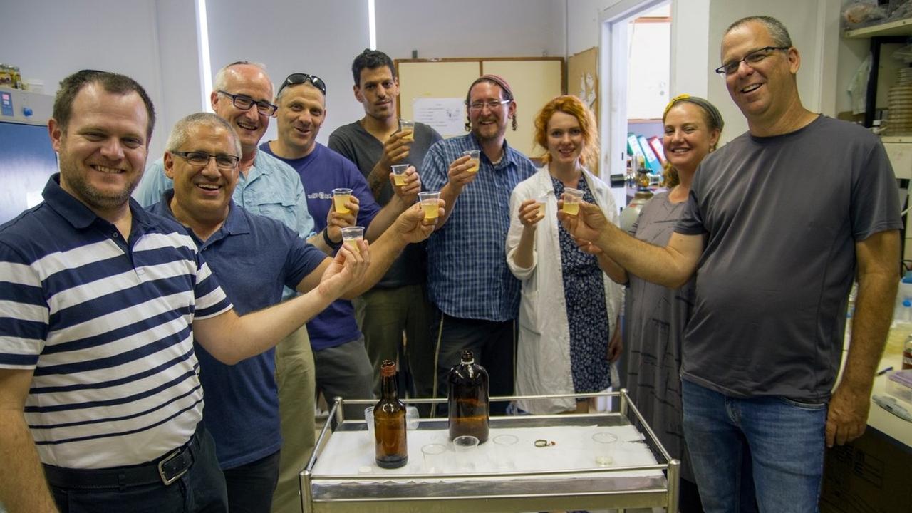 """Микробиологи сварили пиво и медовуху из """"воскресших"""" 5000-летних дрожжей"""