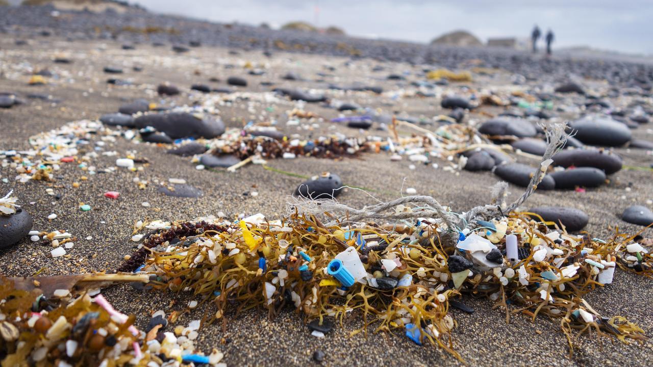 Микробы, разрушающие пластик, помогут хотя бы отчасти очистить Мировой океан от мусора