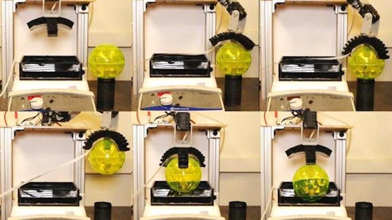 Роборуку впервые наделили чувствительностью к опасным веществам в воде