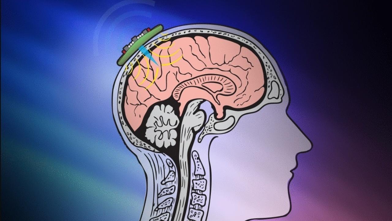 Ультразвук позволил получить оптические изображения внутренних органов и тканей