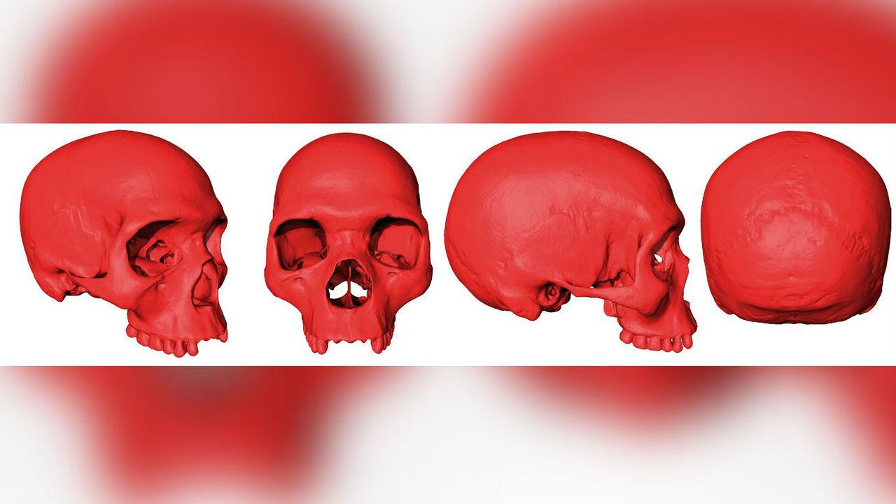 Реконструирован череп первого Homo sapiens
