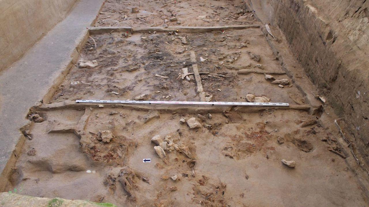 В Брянской области найдено святилище возрастом 23 тысячи лет