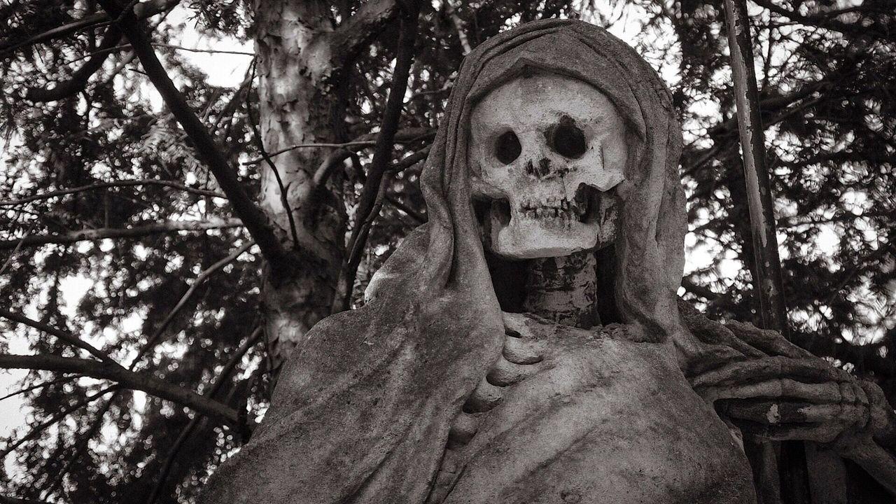 Чёрная смерть пришла в Европу из России