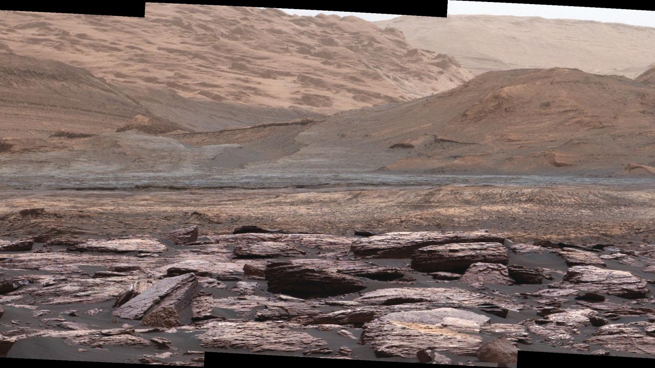 Американский профессор разглядел насекомых на Марсе