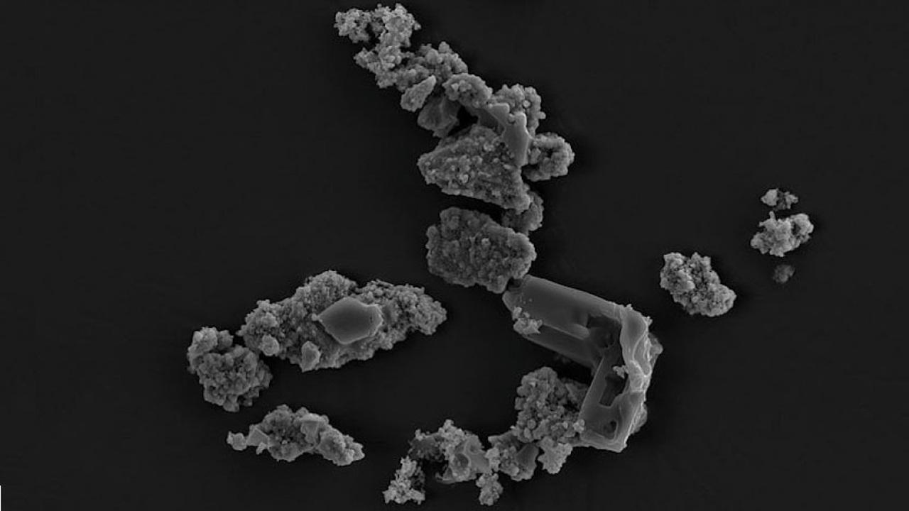 Найден организм, пожирающий метеориты