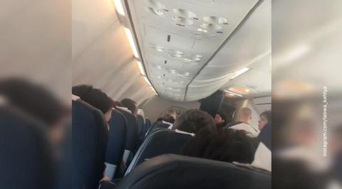 После избиения стюардессы пассажиром самолет экстренно сел в Сочи