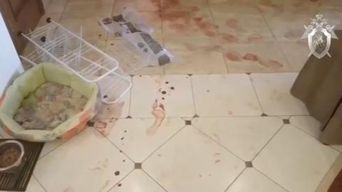 Место кровавой бойни в доме экс-вратаря сборной России сняли на видео