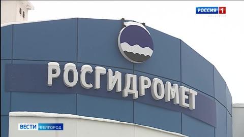Головная боль, раздражительность, бессонница: как резкое потепление влияет на здоровье белгородцев