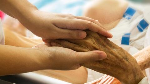 Вести-Курск. В Курске врачи обсудили оказание паллиативной помощи