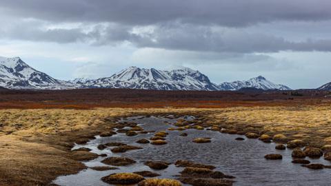 Что станет с экологией, если в Арктике появятся сельскохозяйственные угодья