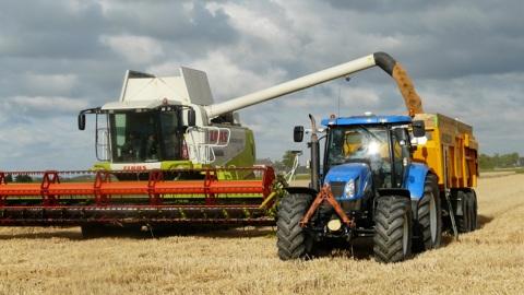 Урожай зерна в Рязанской области превысил 1 млн тонн