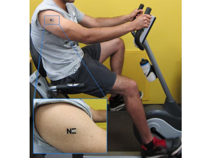 Во время эксперимента добровольцы занимались на велотренажёре с электронной татуировкой, прикреплённой к телу
