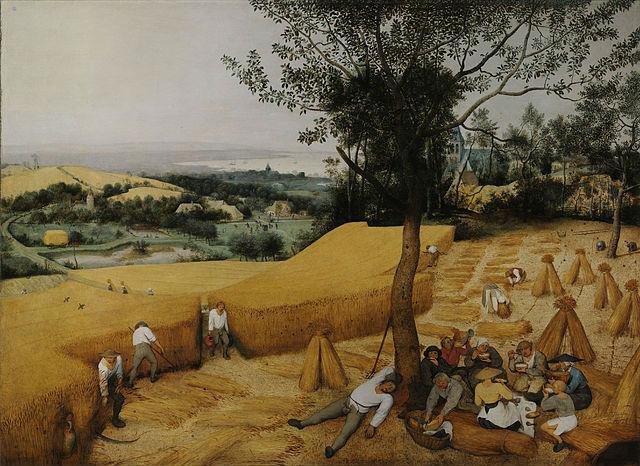 Древние люди начали развивать сельское хозяйство ради приготовления пива, а не хлеба. Картина Питера Брейгеля-старшего, 1565 год