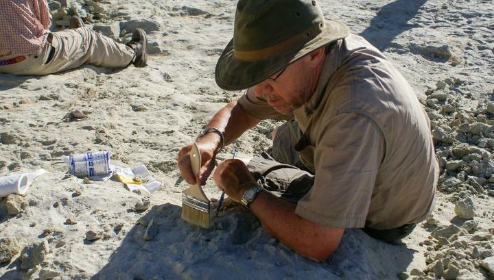 Палеонтолог Дэвид Краузе во время раскопок