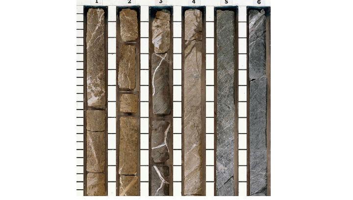 Образцы пород, полученные при бурении верхней мантии Земли в 1993 году. Цвет изменяется от коричневого (верхние слои) к чёрному (нижние слои), что отражает химический градиент в зоне смешивания жидкостей. Микробы были найдены в белых минеральных жилах