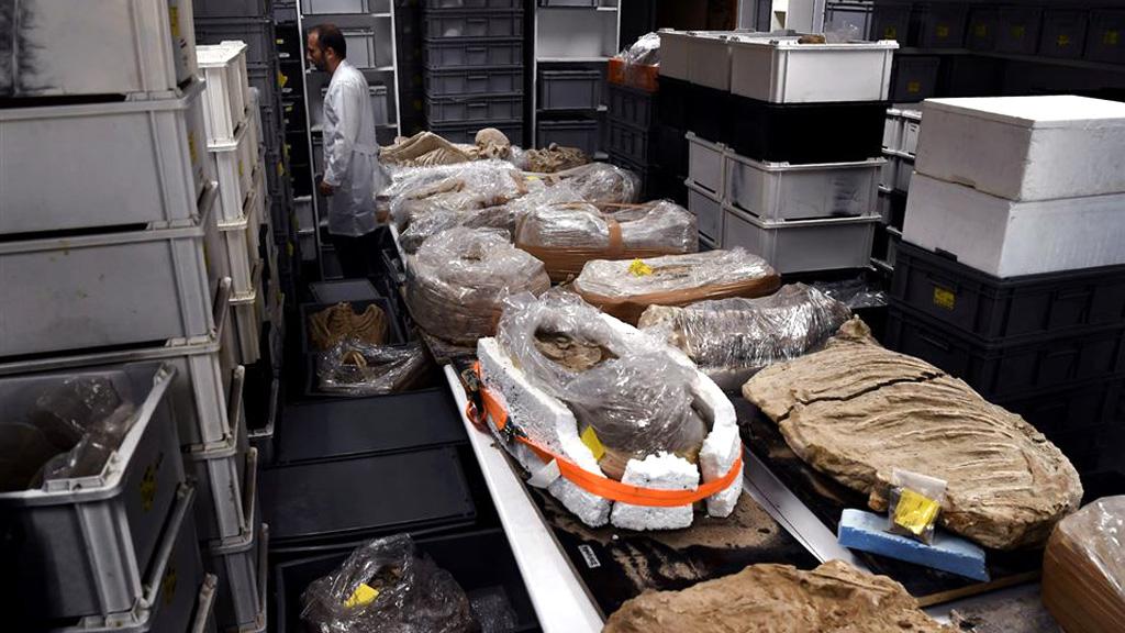 Находки из Фалирона на складе исследовательской лаборатории при Американской школе археологии в Афинах. Фото: Aris Messinis/AFP