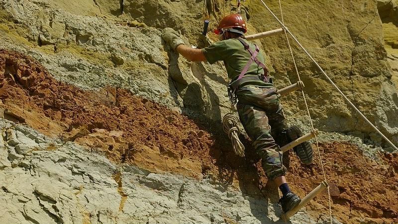 Место раскопок у села Шестаково почти каждый год приносит палеонтологам новые находки.