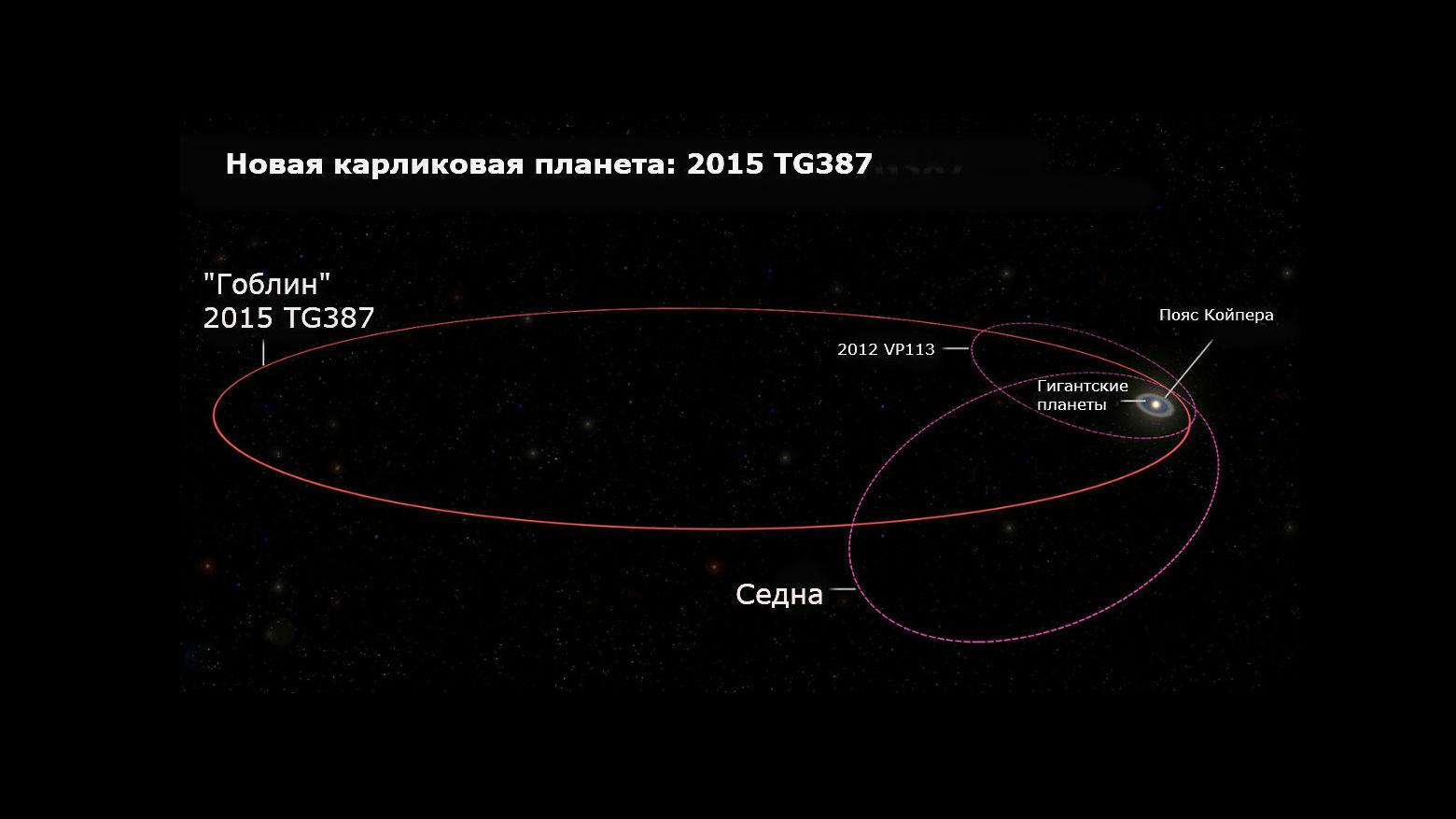 """Орбита объекта 2015 TG387 и его """"собратьев"""" 2012 VP113 и Седны."""