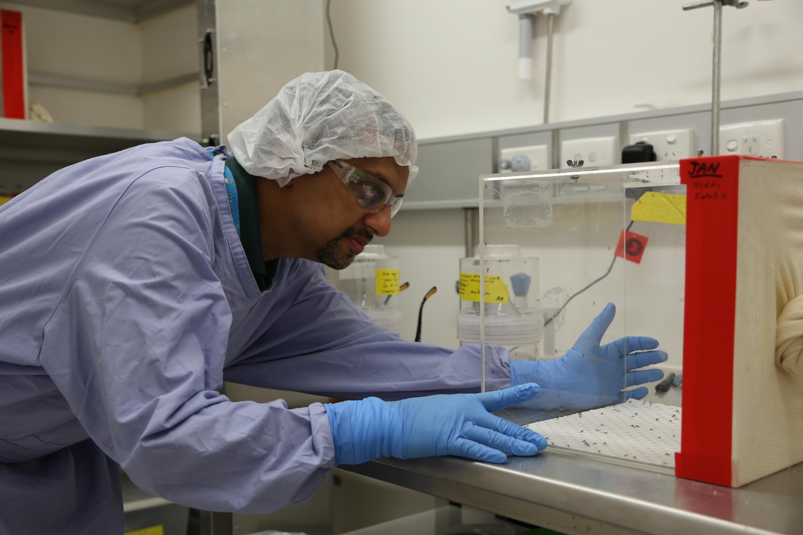 Доктор Прасад Парадкар за работой.