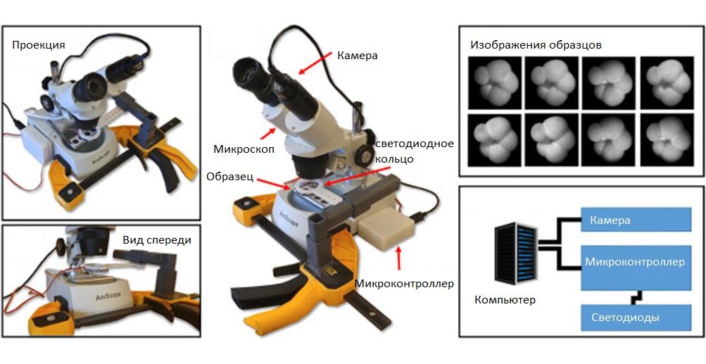 Компьютер работал с изображениями, полученными под микроскопом.